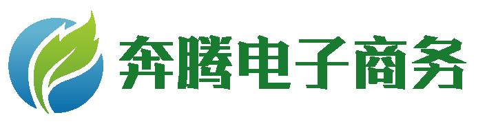 舒城奔腾电子商务有限公司
